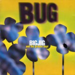 Big Jig and the Groove Dept: Bug (Hypertension 295 158)