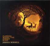 Joshua Burnell: Flowers Where the Horses Sleep (Misted Valley MVR20e)